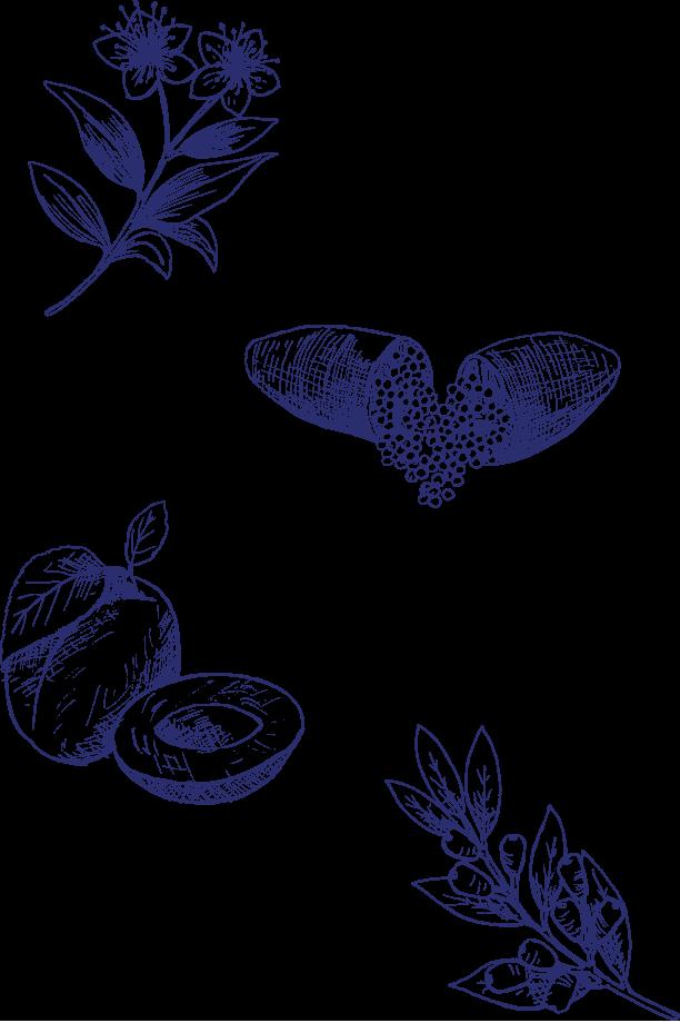 Australian botanicals