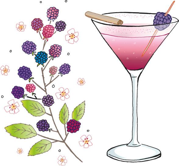 Chilgrove Bramble Gin Cocktail - Bramble Martini
