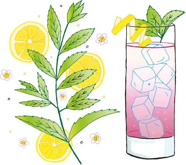 Chilgrove Bramble Gin Cocktail - The Velvet Assassin